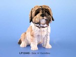 Leonardo LP12445 Sitting Shih TZU Walkies Brown Dog With Lead Or Leash In Mouth