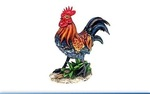 Leonardo LP22887 COCKEREL 9