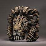 EDGE Sculpture - Savannah, Lion Bust EDB09
