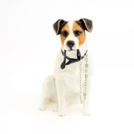 Walkies Jack Russell LP11110 - Leonardo