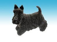Leonardo LP01822 SCOTTISH TERRIER Dog Figurine